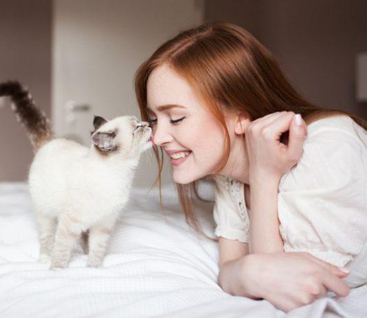 Zašto mačke ližu svoje vlasnike