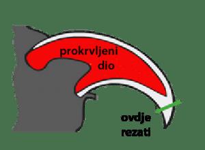 kanzi 01